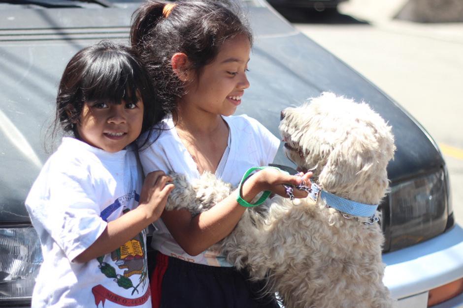 Puppy fue rescatado por la Asocación Entiende Mi Silencio (AEMS) y también será castrado gracias a ellos. (Foto: José Dávila/Soy502)