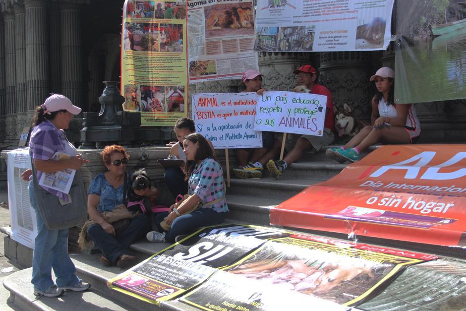 Los manifestantes también recolectaron firmas para solicitar la aprobación de una ley que proteja a los animales.(Foto: Alejandro Balan/Soy502)