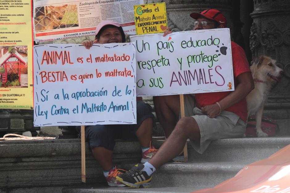 Las personas enviaron mensajes claros a la población que debe tratar a los animales con respeto.(Foto: Alejandro Balan/Soy502)