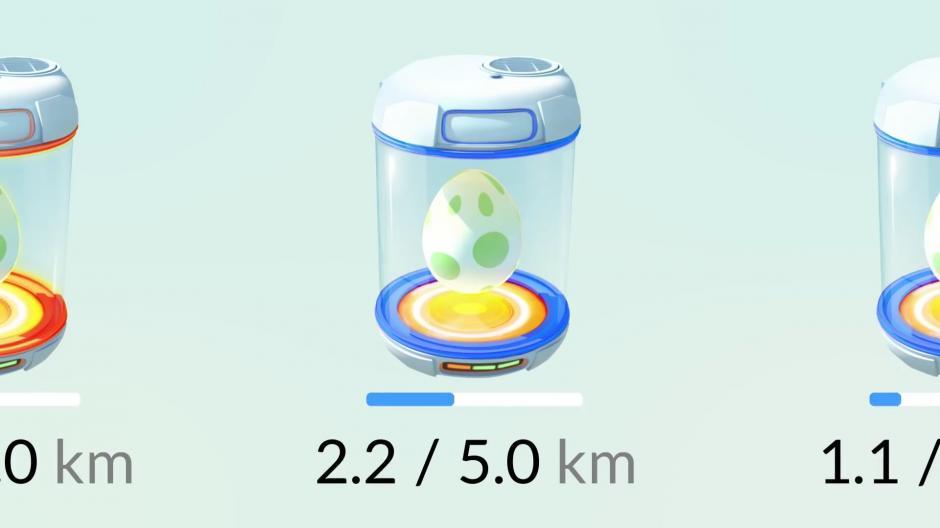 Los huevos requieren de distinto recorrido para eclosionar. (Foto: actualapp.com)