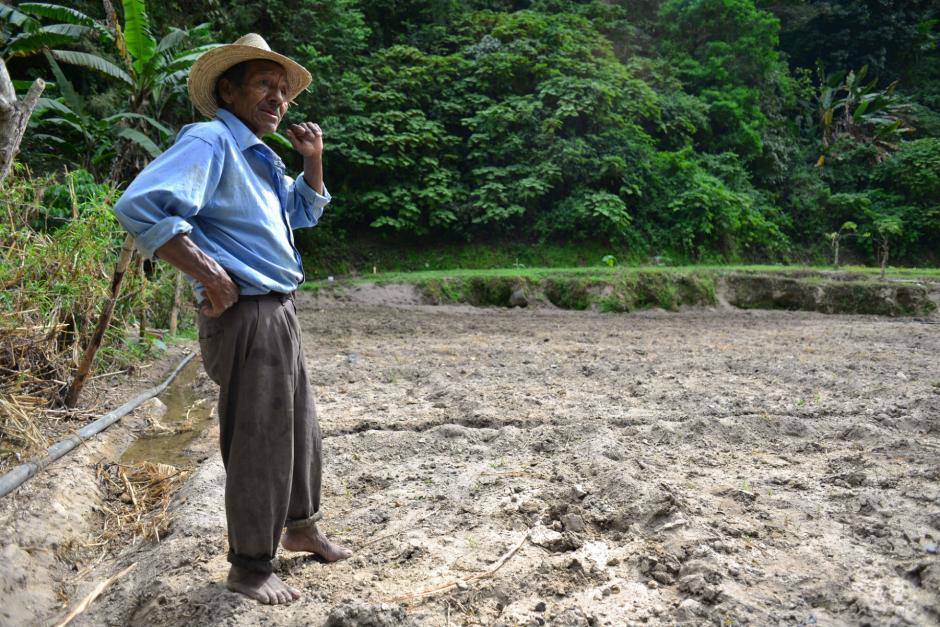 Don Jesús vendió sus terrenos donde fue el derrumbe y después fueron vendidos a una lotificadora. Ahora cultiva frijoles unos metros más abajo. (Foto: Jesús Alfonso/Soy502)