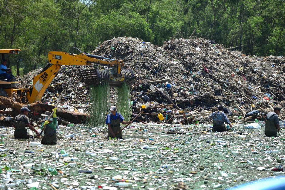 Un grupo de 11 personas se encarga de limpiar el lago (Foto: Jesús Alfonso/Soy502)