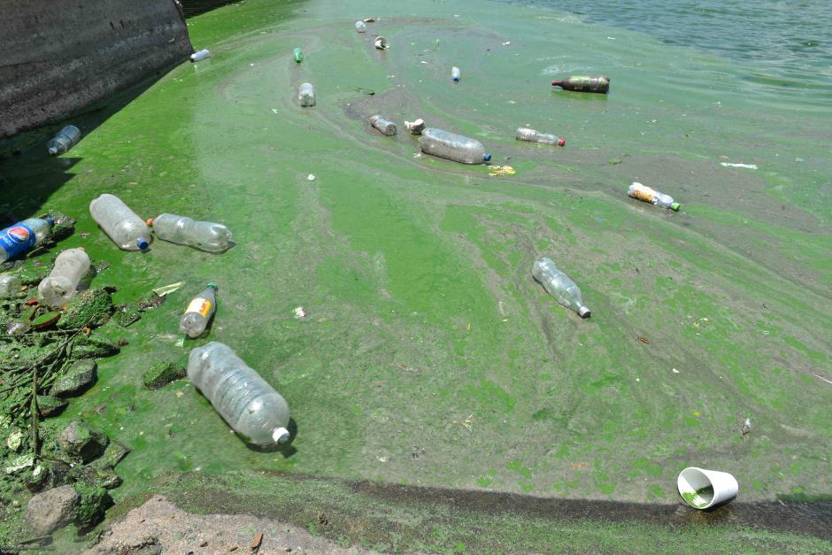 A pesar de los esfuerzos, un poco de basura se dispersa en el lago.(Foto: Jesús Alfonso/Soy502)