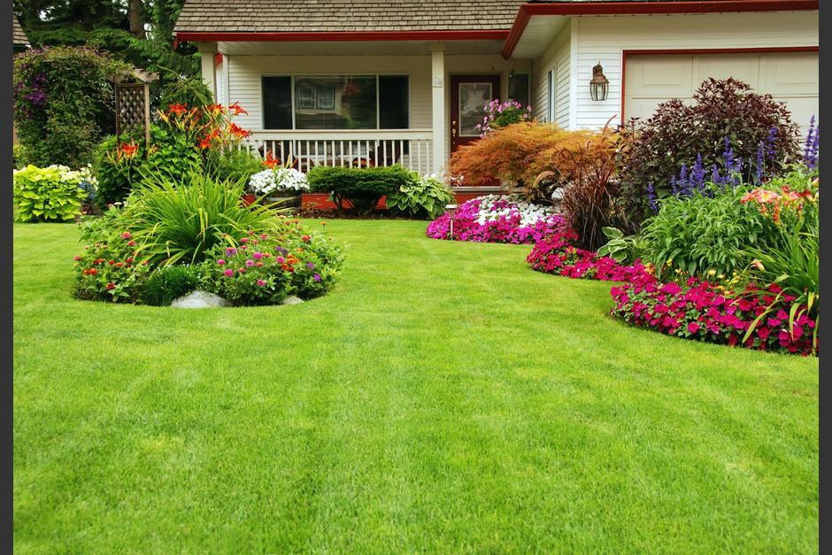 cinco ideas originales para darle vida a tu jardín soy502