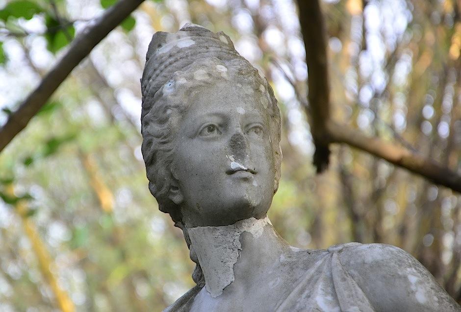 """""""La Chata"""" es una de las guardianas del Jardín Botánico. (Foto: Selene Mejía/Soy502)"""