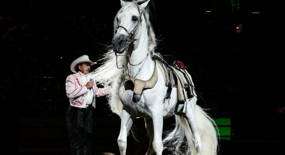 """""""Padrino"""" el inseparable caballo y compañero de Joan Sebastian."""