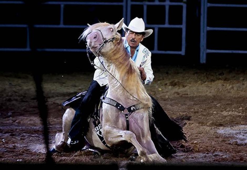 """""""Padrino"""", el caballo más querido de Joan Sebastian."""