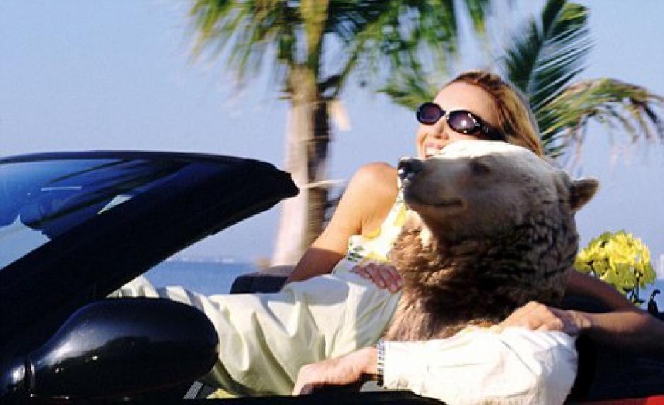 El oso da un paseo en su convertible por la playa. (Foto: reddit.com)