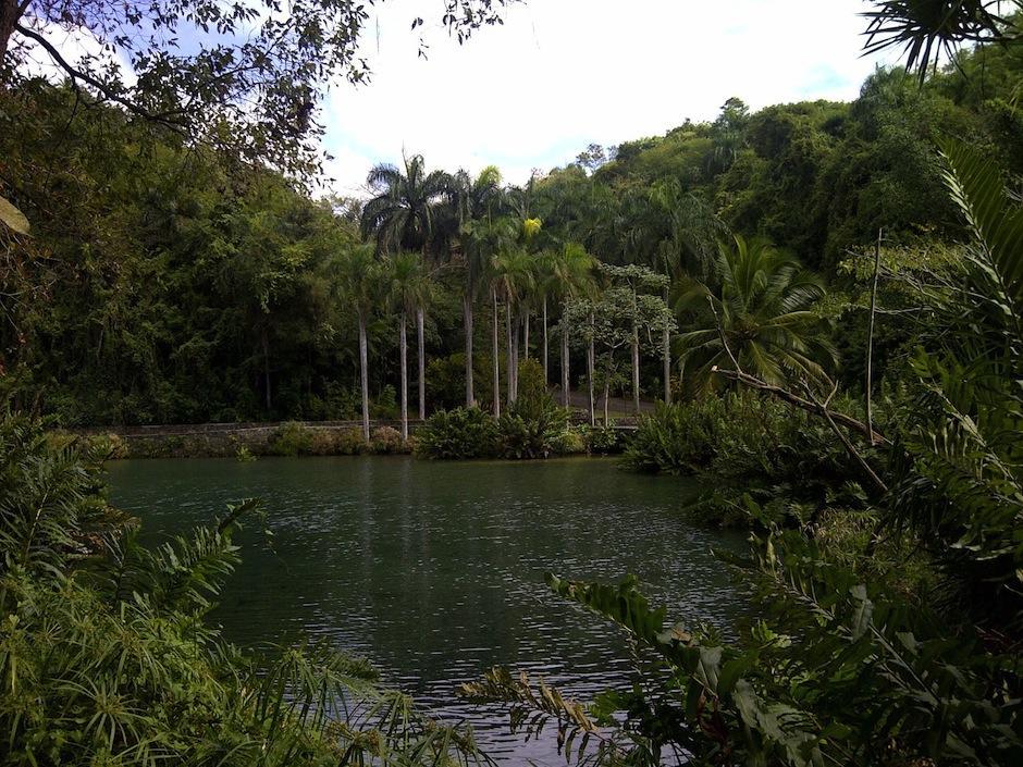 El Parque ZooDom en Santo Domingo, República Dominicana, cuenta con una gran belleza natural. (Foto: deeconomiaysociedad.blogspot.com)