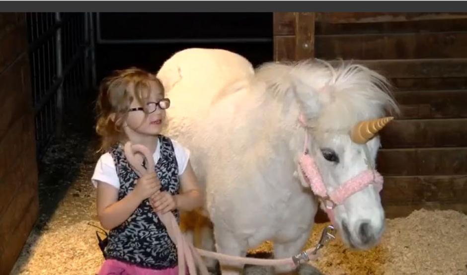 La dueña del pony luego de encontrarlo. (Foto: lapatilla.com)