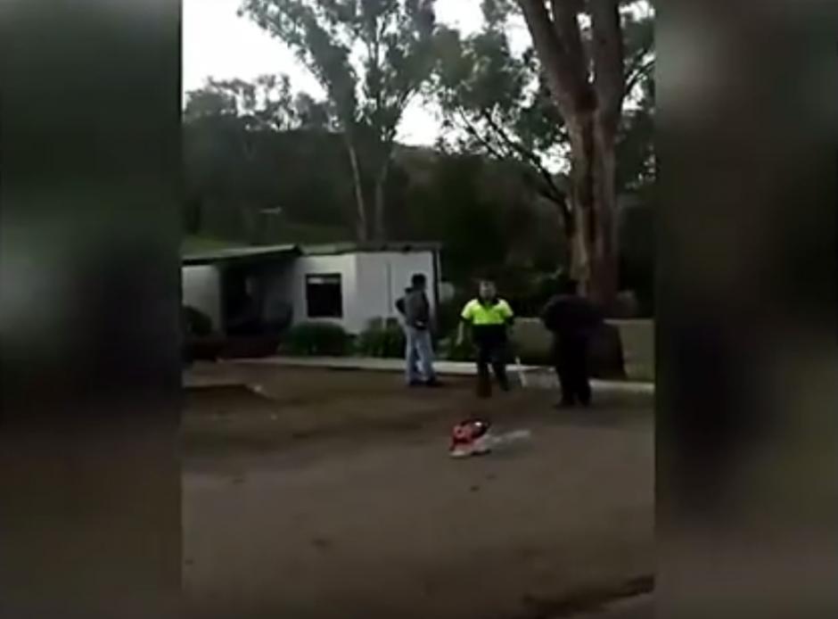 El hombre buscaba talar el árbol por el riesgo que fuera derribado por el viento. (Imagen: captura de YouTube)