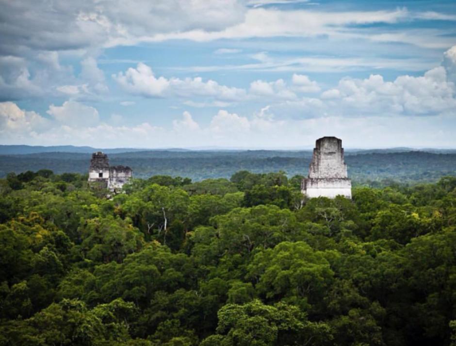 """La foto de """"Rain Forest Alliance"""" de Tikal fue reposteada por el actor. (Foto: Rain Forest Alliance)"""