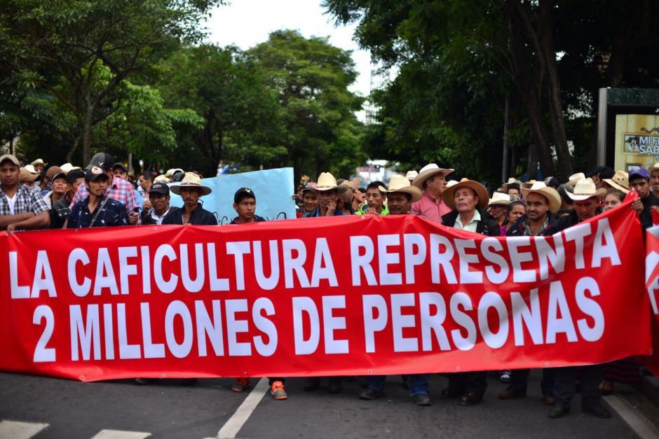 Se prevé que los caficultores también realicen un plantón frente al Congreso de la República. (Foto: Jesús Alfonso/Soy502)