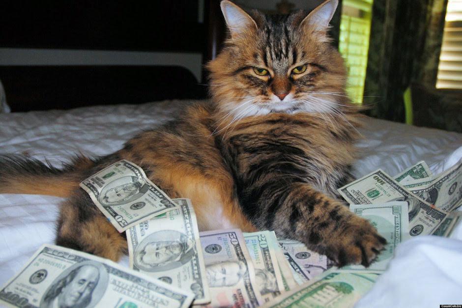 El dinero fue dejado en efectivo. (Foto: Youtube)
