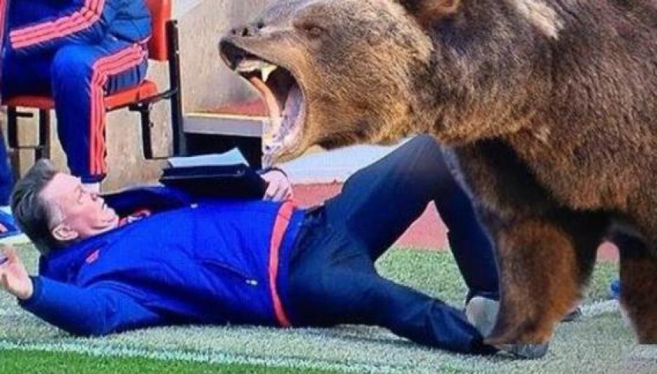 """La película """"El renacido"""" y la escena de combate entre uno de los protagonistas (DiCaprio) y un oso, también fue recreada."""