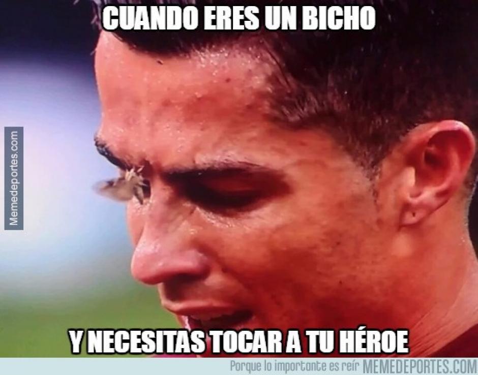 La polilla que se posó en el rostro del delantero portugués no pasó desapercibida. (Foto: Twitter)