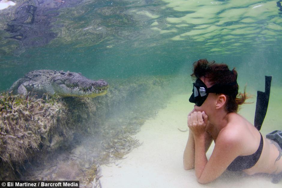 La modelo ha buscado durante años, patrocinio para continuar su pasión de nadar junto a animales salvajes. (Foto: Eli Martínez/Barcroft Media)