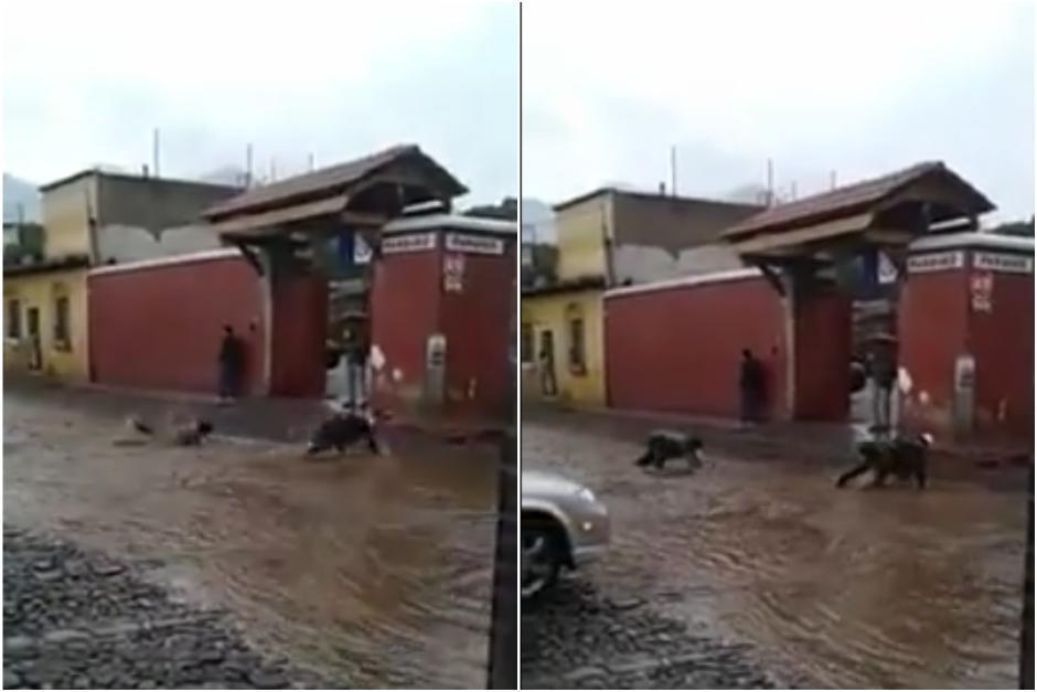 Dos hombres se divierten con la corriente pluvial que pasa por las calles y avenidas de Antigua Guatemala. (Foto: Captura Youtube)