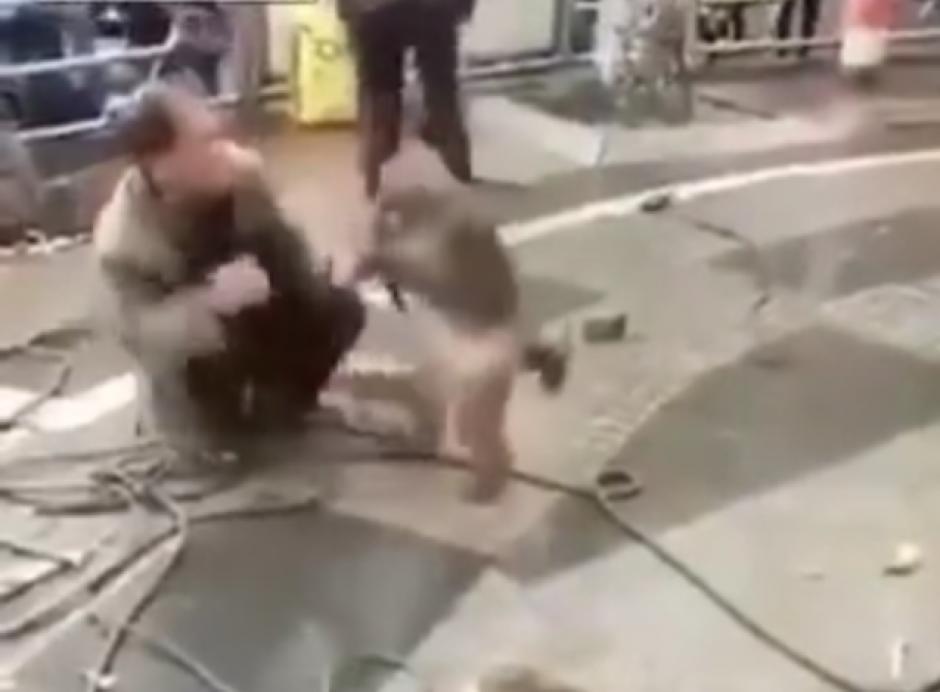 Un hombre adiestra a sus monos en una calle de China. (Captura de pantalla: top videos/YouTube)