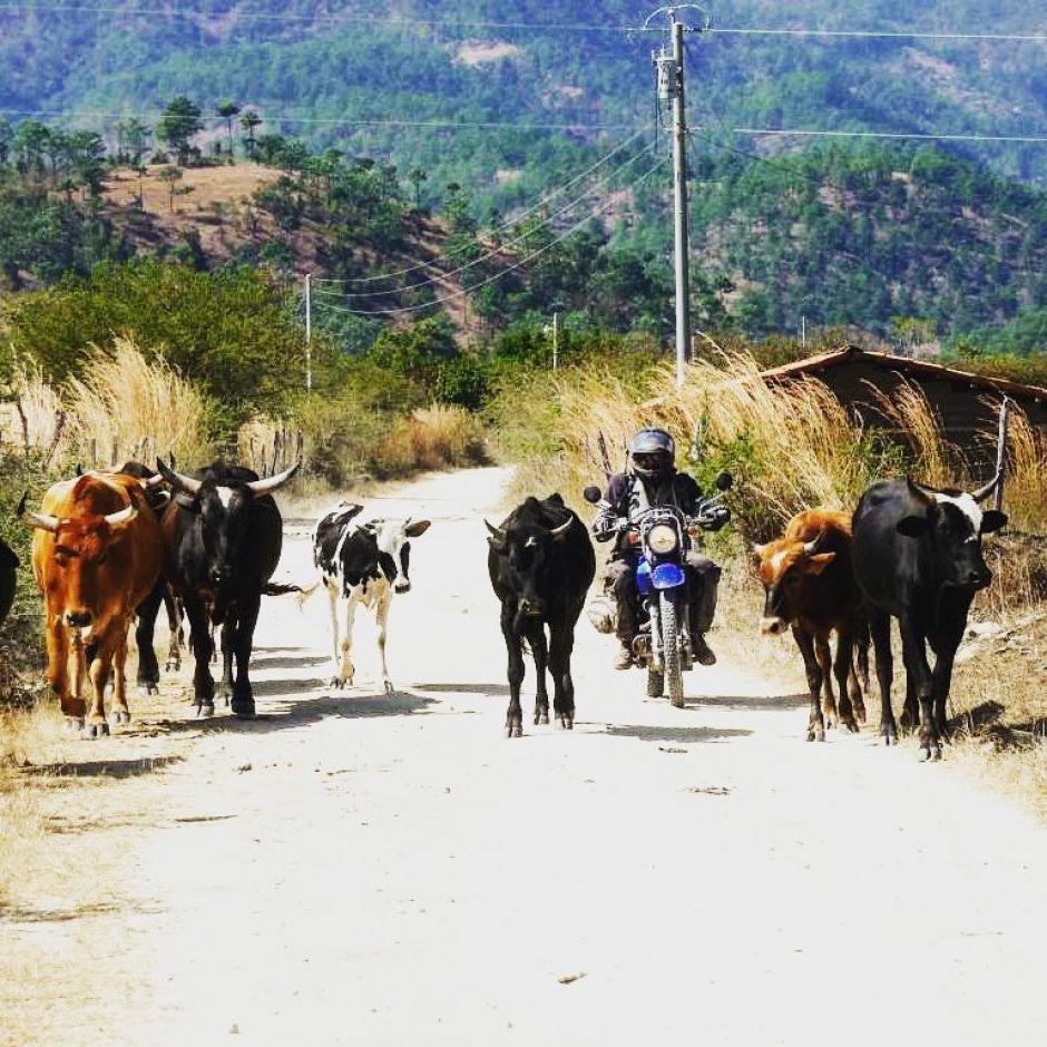 Guatemala tienen lugares incríbles para visitar sobre ruedas. (Foto: Motorcycle Adventure Tours in Guatemala)