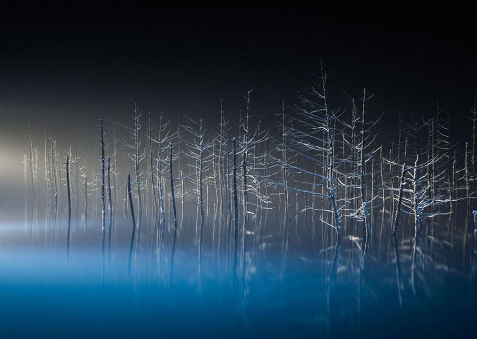 Las ramas de árboles congelados crean una épica imagen. (Foto: Hiroshi Tanita/National Geographic)