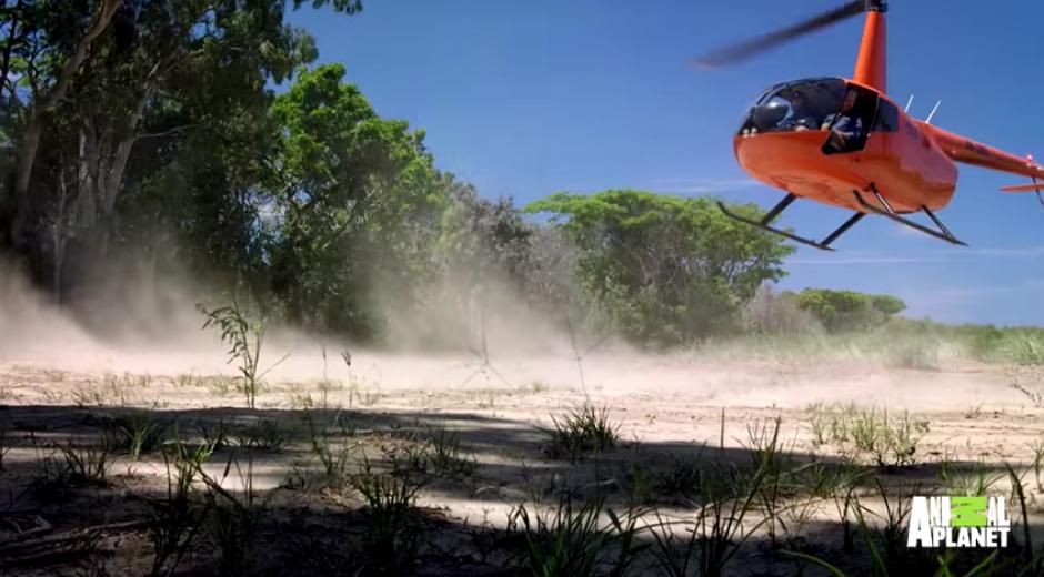 El  equipo buscaba un animal del lugar. (Foto: Youtube)