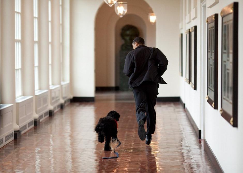 El presidente Barack Obama corre junto a su mascota en uno de los pasillos de La Casa Blanca.  (Foto: Pete Souza/ La Casa Blanca)