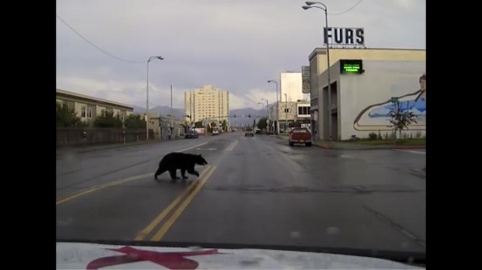 Las imágenes fueron captadas por una cámara colocada en un carro. (Foto: Captura de YouTube)