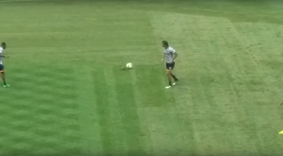 El balón le pegó al ave cuando este fue enviado hacia los pies de Ashley Cole. (Imagen: Captura de pantalla)