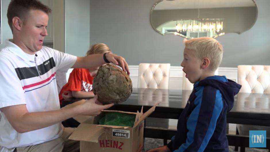 Dan y su hijo Lincoln compraron un panal de avispas a través de Ebay. (Foto: YouTube)
