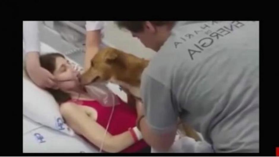 Su última voluntad era ver a su perrito. (Foto: YouTube)