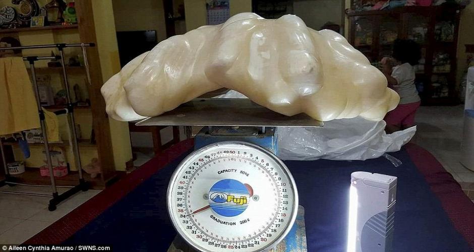 Esta es la perla donada por el hombre, la cual está valorada en 100 millones de dólares. (Foto: Daily Mail)