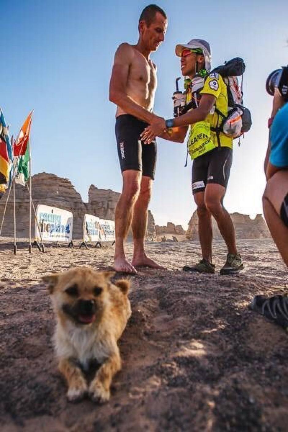 La organización de la maratón cuida de la perrita en lo que ambos se vuelven a encontrar. (Foto: crowdfunder)