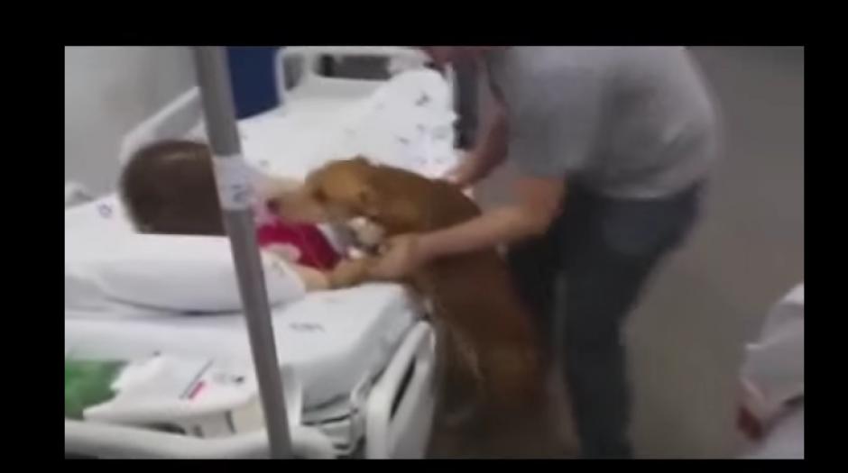 Su can le mostró todo el amor del mundo. (Foto. YouTube)