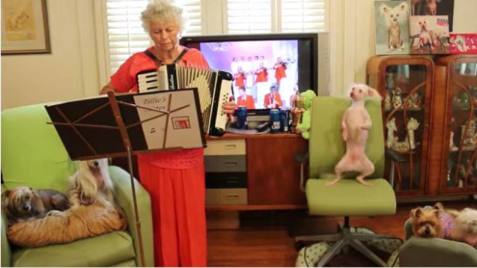 La anciana toca polka con su acordeón. (Foto: Tomado de YouTube)