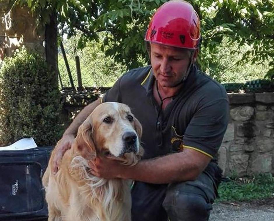 El perro se mostró feliz y agradecido con los rescatistas. (Foto: www.losandes.com.ar)