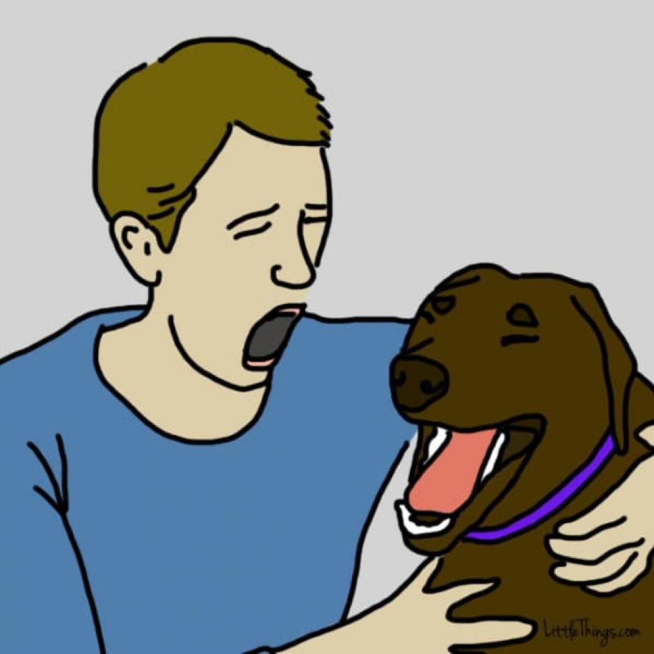 Los perros bostezan cuando alguien que aman bosteza. (Foto: littlethings.com)
