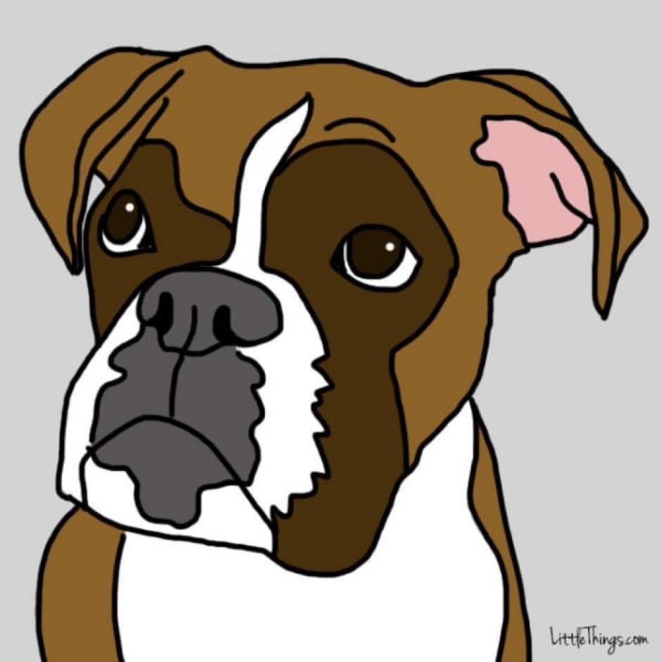 Cuando un perro mueve su ceja izquierda es porque está viendo a alguien con quien tiene un fuerte vínculo. (Foto: littlethings.com)