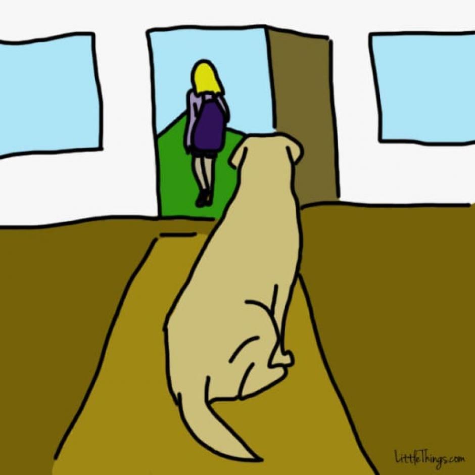 Si tu perro es calmado cuando te vas significa que confía en ti. (Foto: littlething.com)