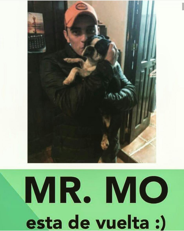 Giordano se reencontró con su mascota la noche de este domingo. (Foto: @giordanogt/Instagram)