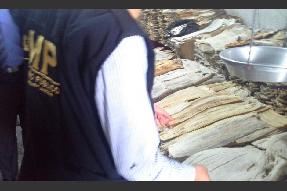La fiscalía de Delitos contra el Ambiente realizó el decomiso de carne de Pez Vela en un minimercado de la zona 1. (Foto: MP)