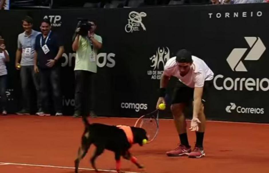 Los tenistas y los perros hicieron equipo en la cancha. (Foto: Televisa)