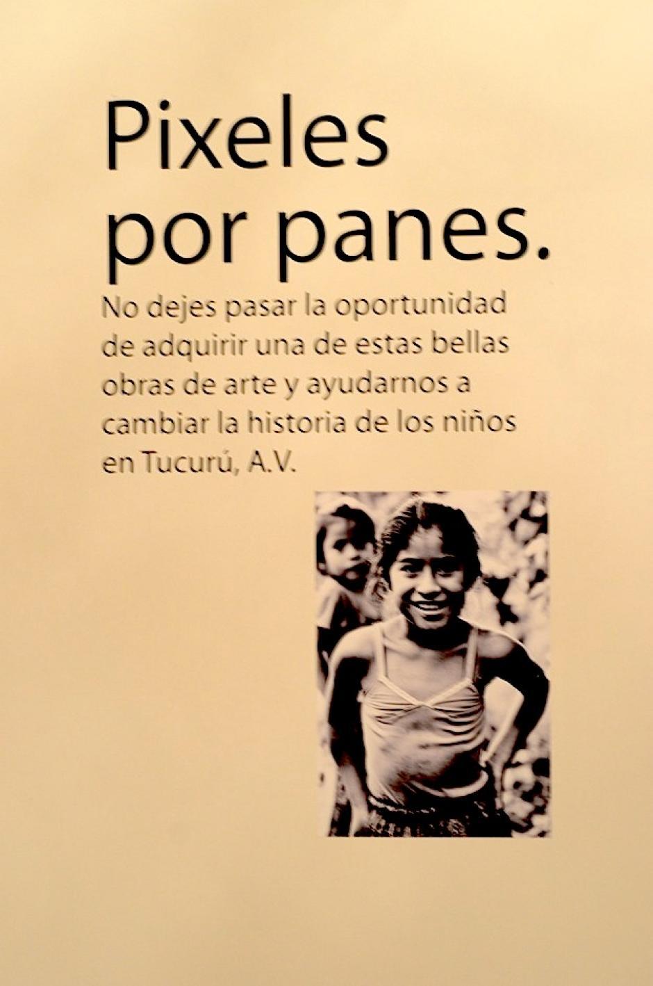 Los fondos recaudados en la venta de estas fotografías ayudarán a Manos de Amor a continuar con esta labor. (Foto: Selene Mejía/Soy502)