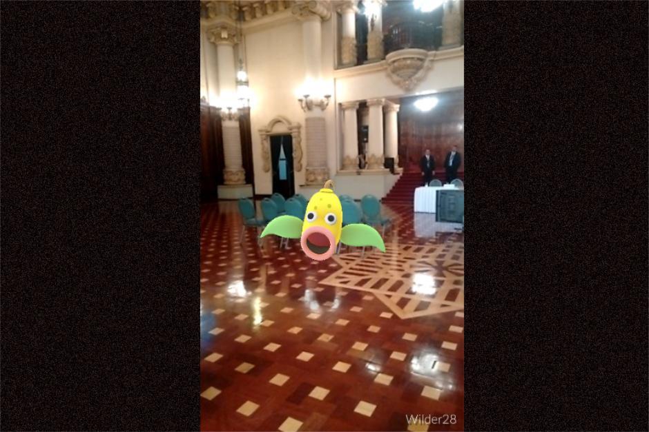 Un Weepinbell también se metió en el Salón Banderas del Palacio Nacional. (Foto: Wilder López/Soy502)