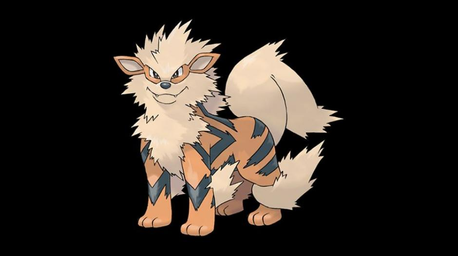 El Arcanine se encuentra en el listado con una tasa de captura del 8%. (Foto: Pokémon)