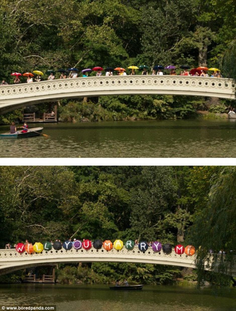 Muchas personas colaboraron para que la propuesta de matrimonio fuera inolvidable. (Fotos: Bored Panda)