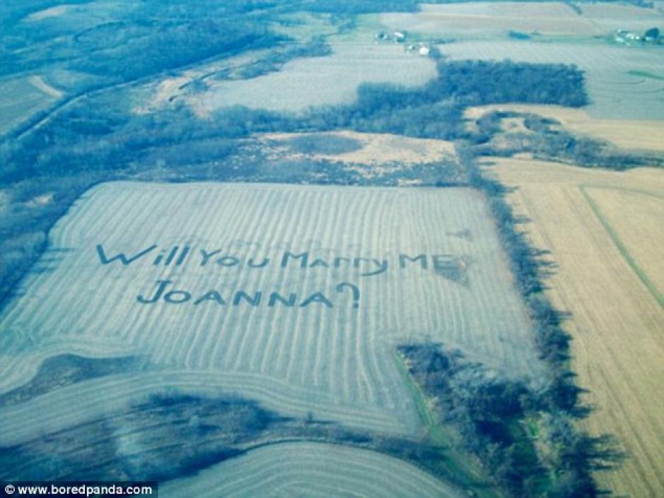 Desde una aeronave le propusieron matrimonio. (Fotos: Bored Panda)