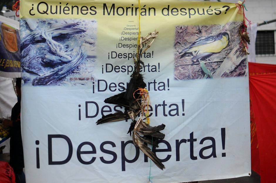 Desde hace 7 días, pobladores en resistencia de La Puya protestan frente al Ministerio de Energía y Minas, piden el cese de operaciones de la mina El Tambor. (Foto: Alejandro Balan/Soy502)