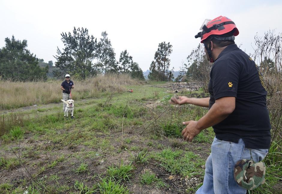 Orellana forma perros que rastrean personas en desastres naturales. (Foto: Selene Mejía/Soy502)