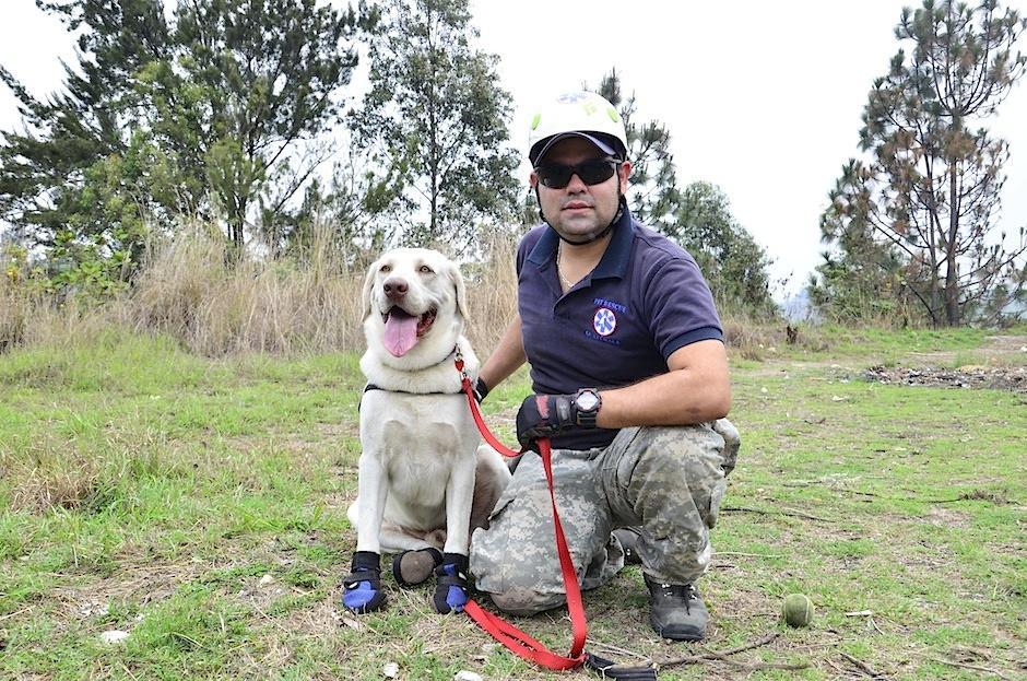 Drago ahora es un gran rescatista. (Foto: Selene Mejía/Soy502)